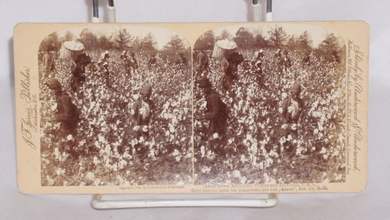 "Away down among the cotton and the coons, U.S.A./Weit brunten unter der baumwolle und den ""coons"", ber. Gt. N.=U. Stereo photo."