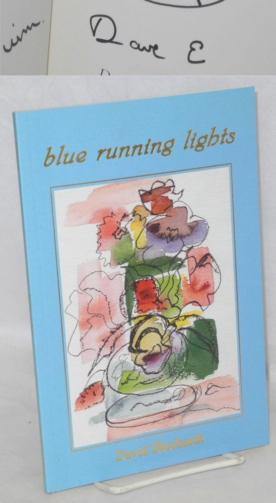 Blue running lights. David Eberhardt.