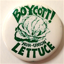 Boycott! Non-union lettuce [pinback button]. United Farm Workers.