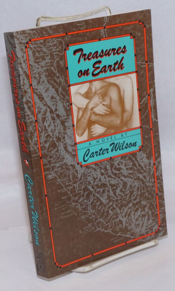 Treasures on Earth; a novel. Carter Wilson.