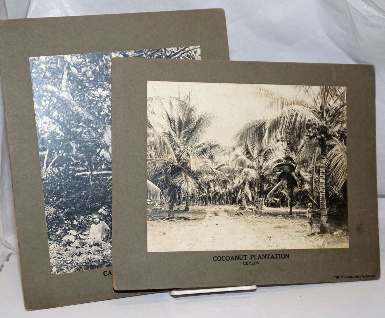 [Two photographs mounted on boards, prepared for the Philadelphia Museums]