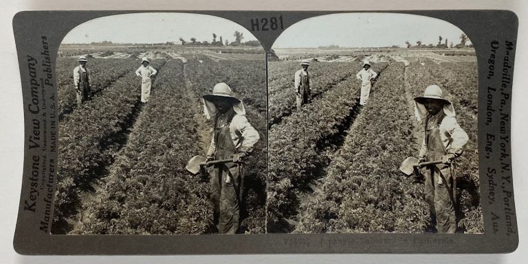 Japanese Laborers in California [stereoview card