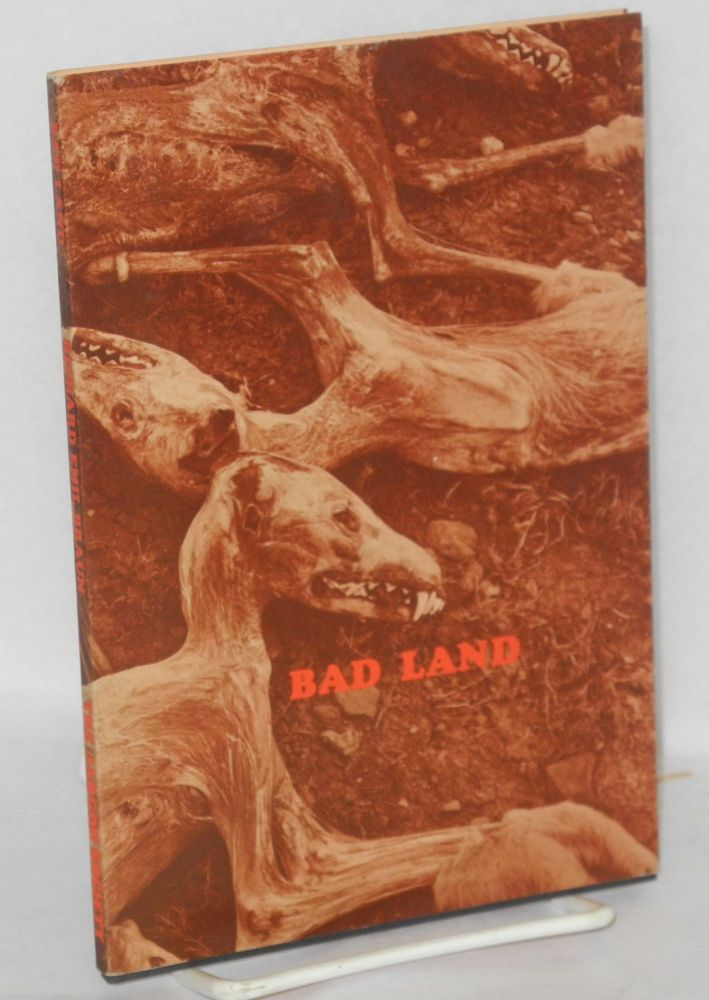 Bad land. Richard Emil Braun.