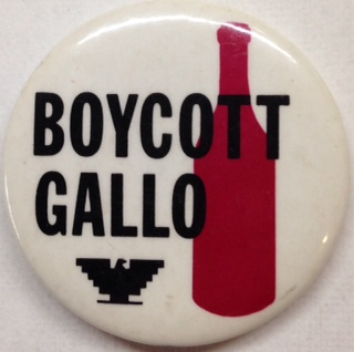 Boycott Gallo (pinback button)