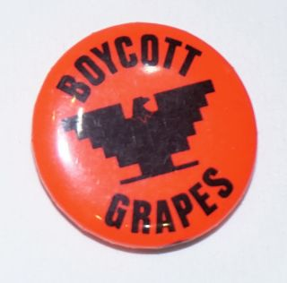 Boycott Grapes [pinback button]. United Farm Workers
