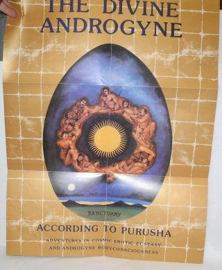 The Divine Androgyne according to Purusha: adventures in cosmic erotic ecstasy and androgyne body consciousness