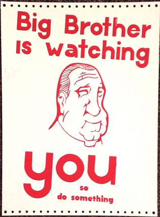 Big Brother is watching YOU so do something [poster