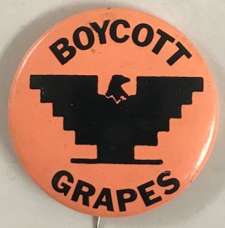 Boycott grapes [pinback button]
