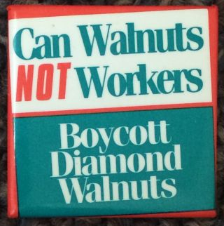 Can walnuts not workers / Boycott Diamond Walnuts [pinback button