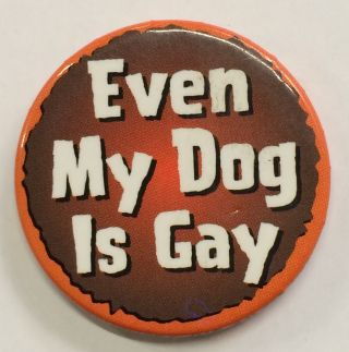 Even my dog is gay [pinback button